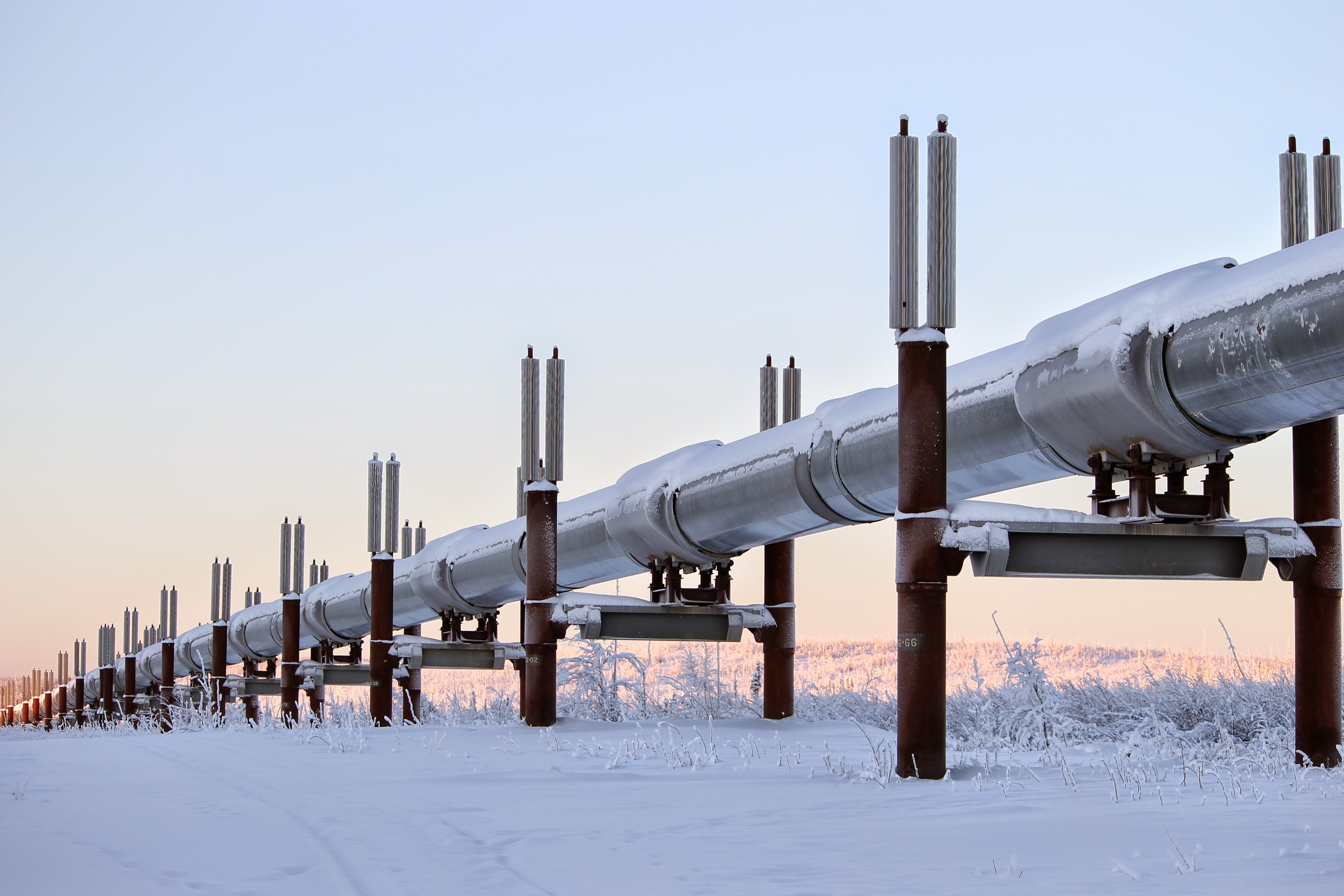 oleoducto trans alaska